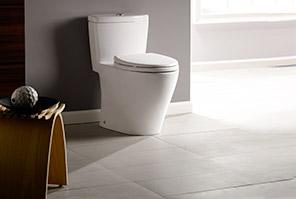 explore toilets