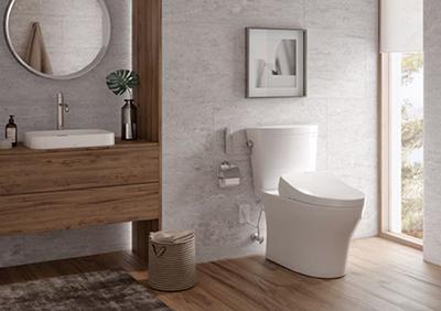 Aquia IV Arc Toilet